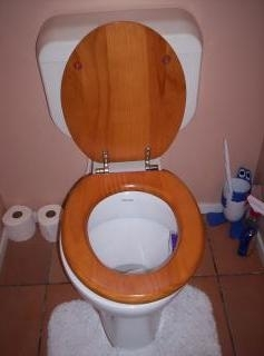 Professional toilet installation and repair services ensure your bathroom plumbing systems are functioning properly.