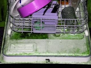 Broken, dirty dishwashers are replaced or repaired by experienced Milwaukee County plumbers from Andersen Plumbing.